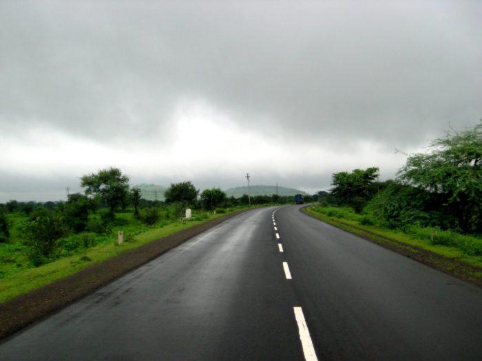 Purr-Fect Road